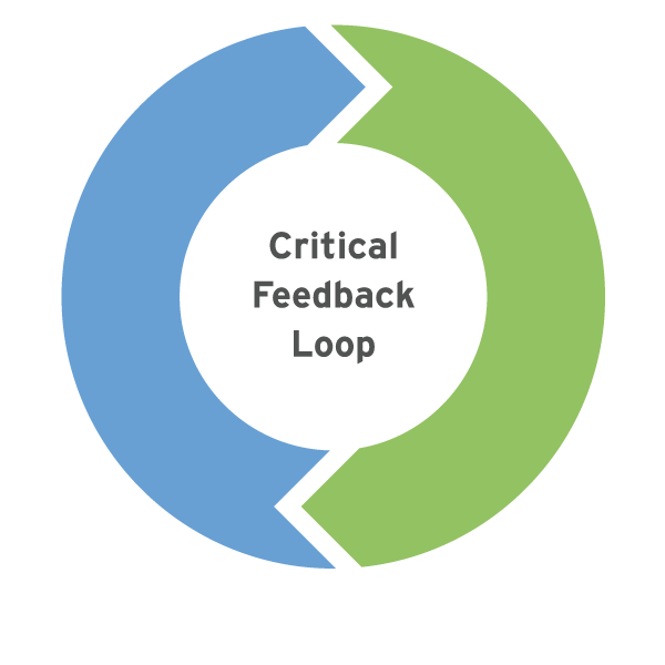 Verger Capital Management Process Critical Feedback Loop